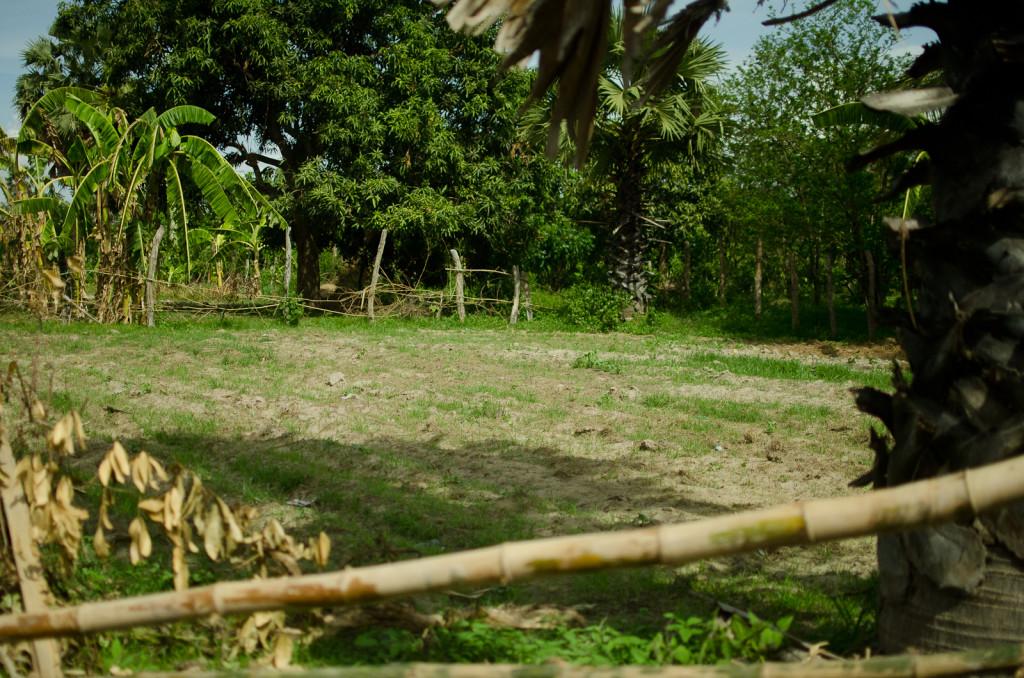 Cambodia_May2013-11